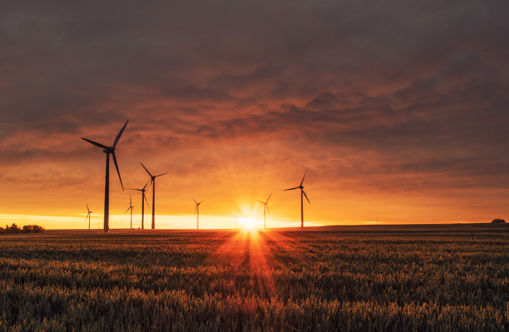 Photo of a wind farm at sunrise