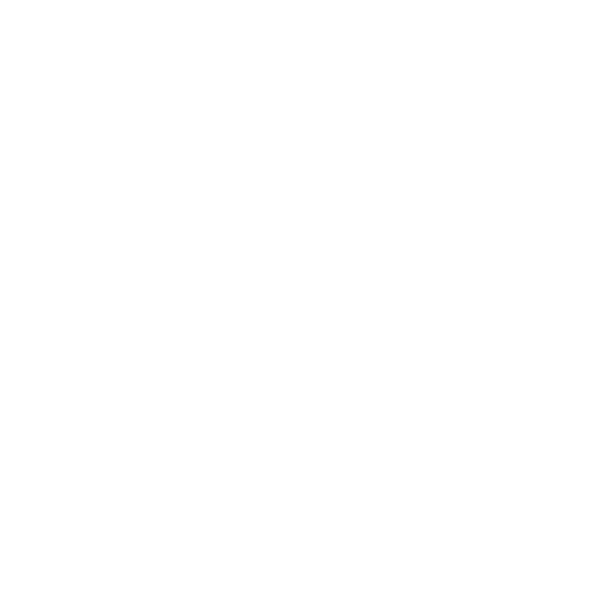 UNSW Canberra Logo